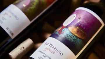 Malbec & Torrontés, deux vins argentins en France, vision d'une Argentine