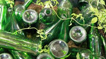 Production et consommation durables, un défi pour l'industrie des spiritueux